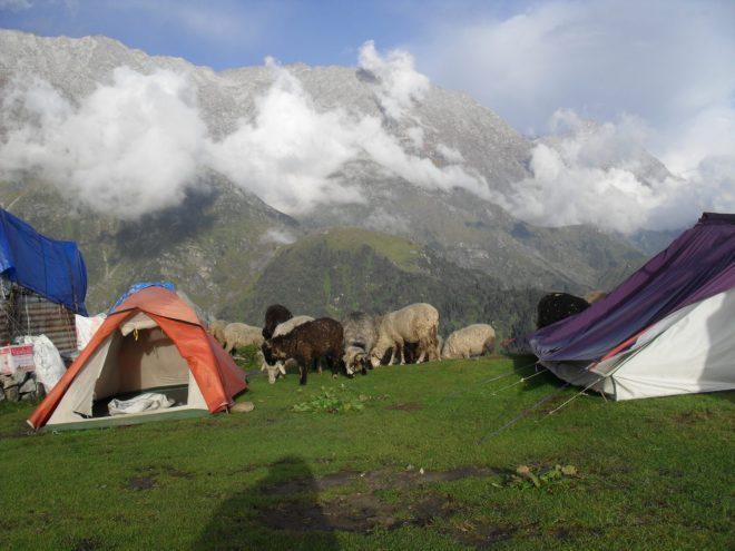 Dharamsala-netmarkers
