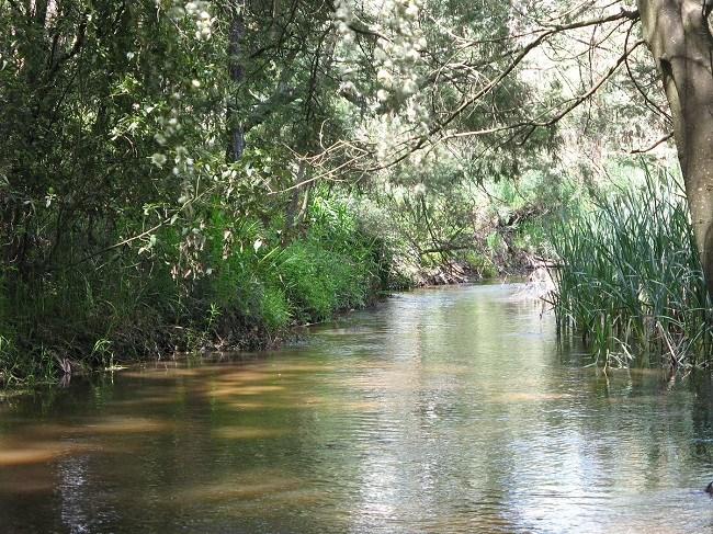 Yarra-River-netmarkers