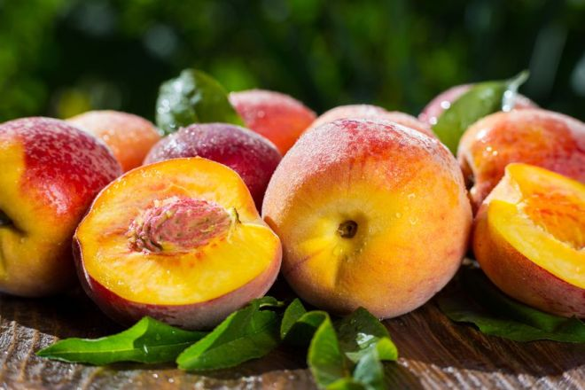Apricots, Nectarines and Peaches-netmarkers