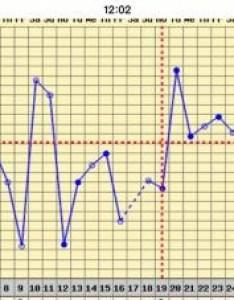 Name imageuploadedbynetmums  views size kb also implantation dip bbt chart help netmums chat rh
