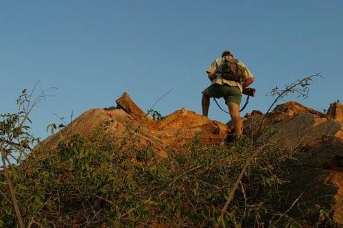 Økologiske og økonomiske fordele ved jagt