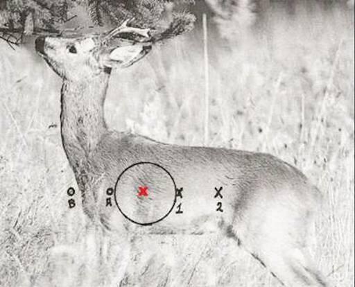 Pas på sidevinden under indskydning og jagt