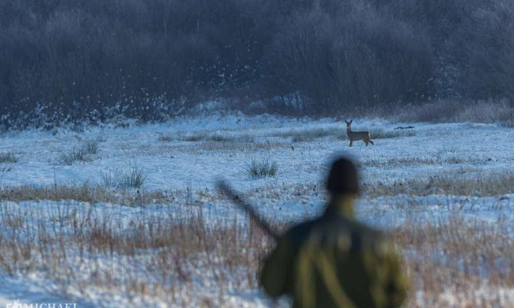 Nu bliver nye jægere bedre skytter