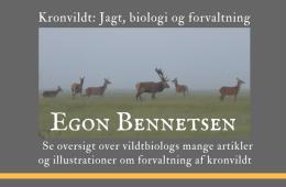 40 artikler fra Egon Bennetsen