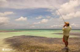 Cuba er endnu et komplekst fiskeparadis