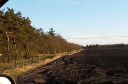 Vildtsikre el-hegn breder sig i kronvildtområder
