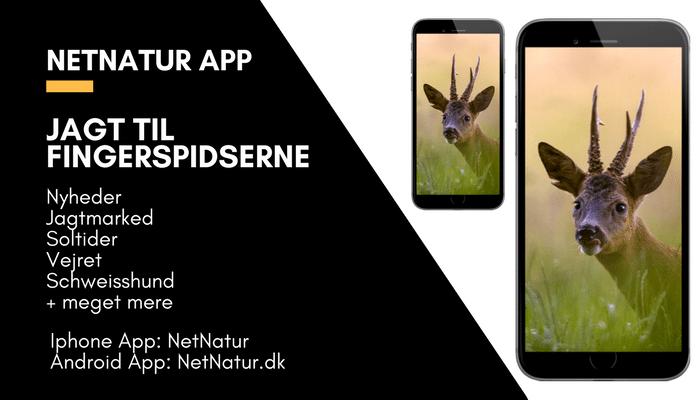 Apps fra Netnatur – med dig overalt