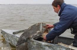 Fiskeriterritoriet og reservater - hvad er reglerne?