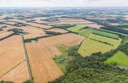 L&F: Landbrugspakke belaster ikke miljøet