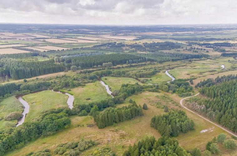 Ny portal for naturpleje i Danmark