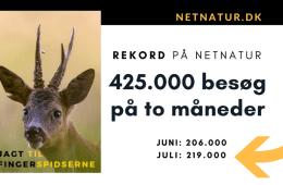 Netnatur.dk: 219.000 besøg i juli