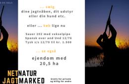 Jagtmarked: Sauer og ejendom med 20,5 ha