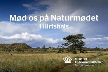 Naturmødet: Mød Naturstyrelsen og stil spørgsmål til direktionen