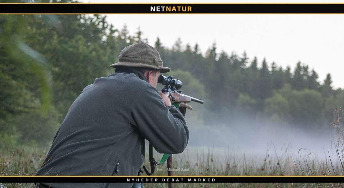 De forskellige kugletyper #2 - Bondede kugler
