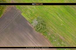 Landbrugsarealer udlægges til natur