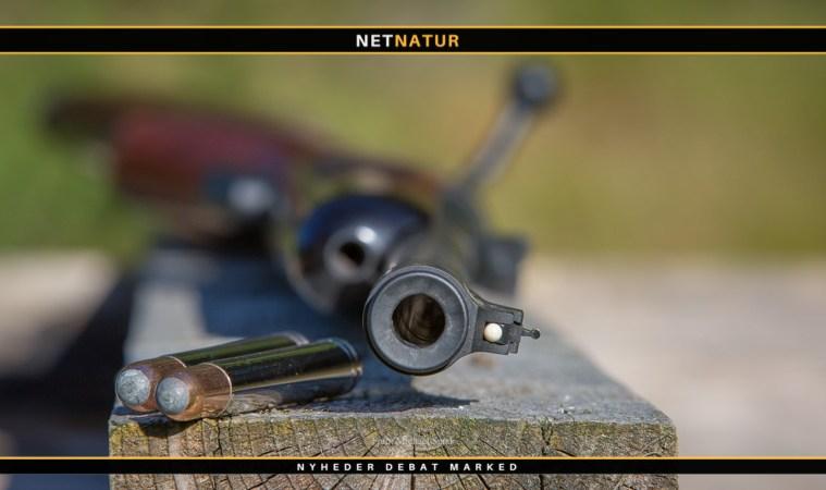 .460 Weatherby Magnum - den ultimative kraft