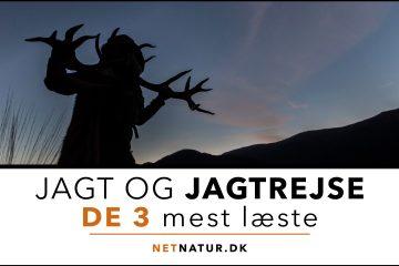 Jagtrejser og Netnatur