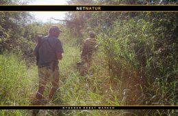 Valg af våben og ammunition til Sydafrika