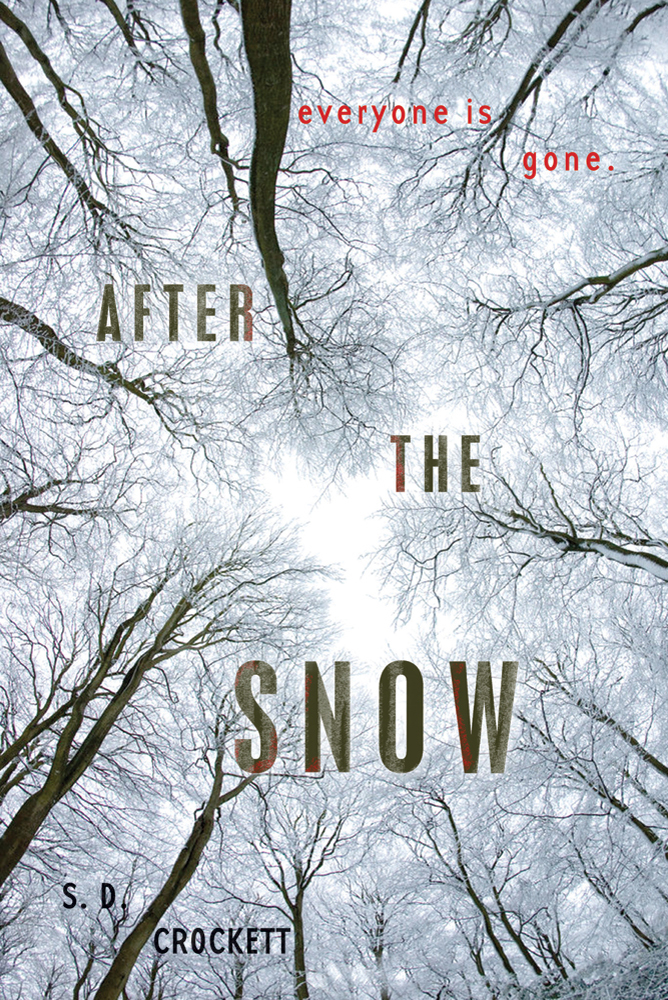 Cover of After the Snow by S.D. Crockett