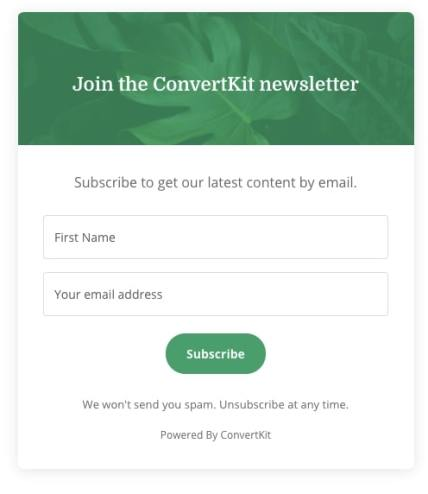 email subscription newsletter Example