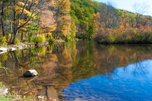 laurel-hill-creek-lan-344-g-l-sarti