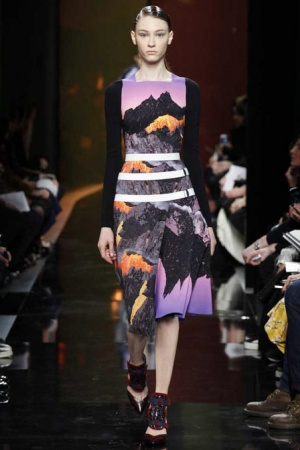 tmp_peter-pilotto-rtw-fw2014-runway-17_121042763448.jpg_promotions_feature_tn1806417906