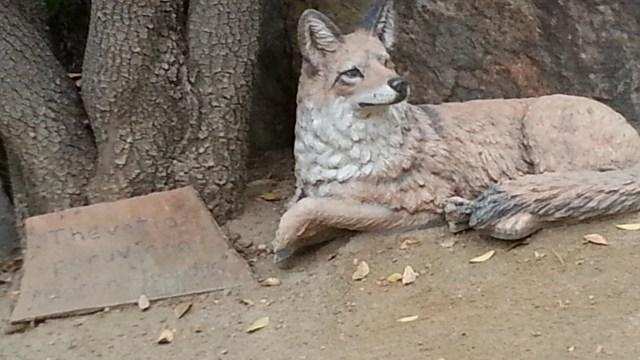 'Fauna'