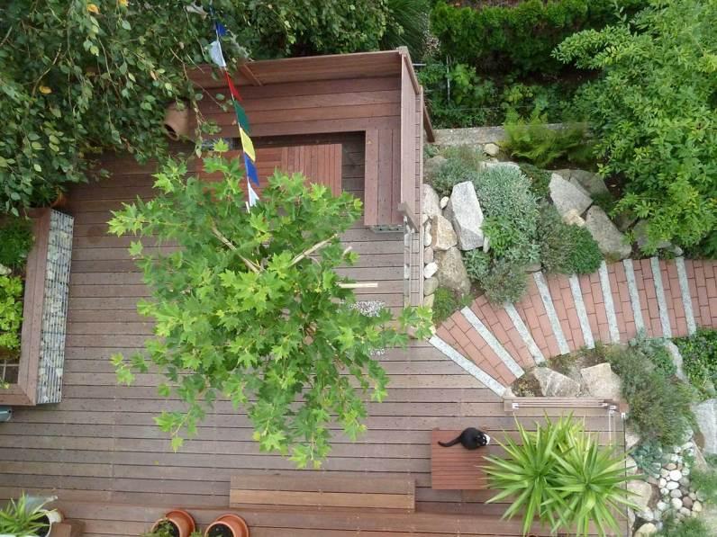 Terrassenlandschaft-bearbeitet