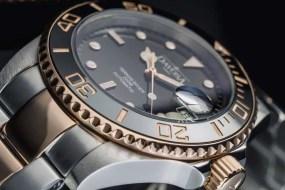 Neue Modellvarianten in der Davosa Ternos Kollektion