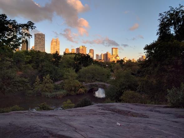 Die Sonne geht auf über dem New Yorker Central Park, mit zurückgelassener Wasserflasche. Foto: Tim O'Reilly
