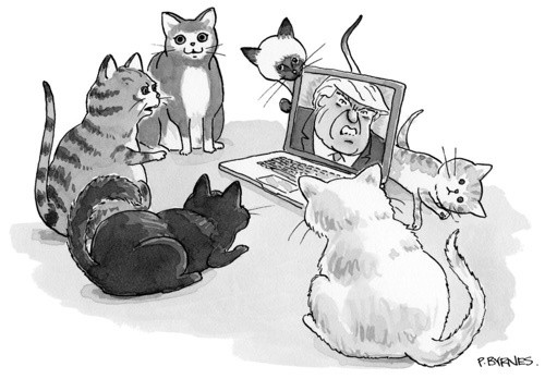 Illustration: Pat Byrnes, The New Yorker.