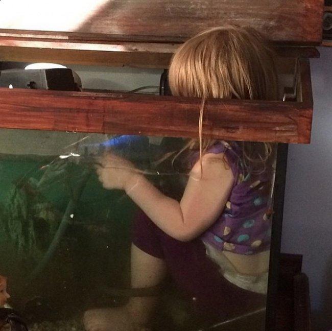 bebe dans aquarium baignade
