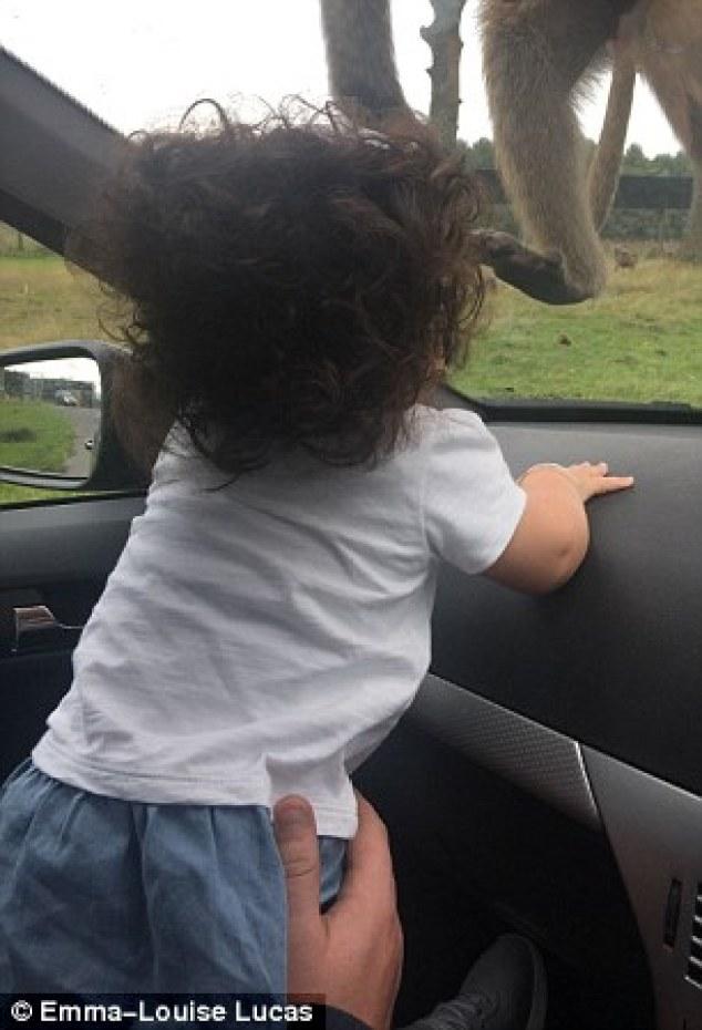 isla rae bebe cheveux fous