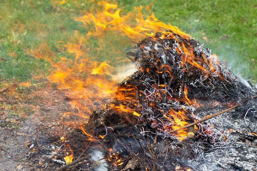 Peut-on brûler des déchets verts dans son jardin ?