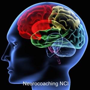 Neurocoaching NCI Luis Gaviria
