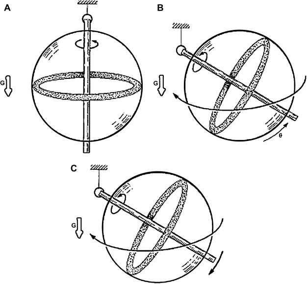 Basic Principles of Magnetic Resonance Imaging