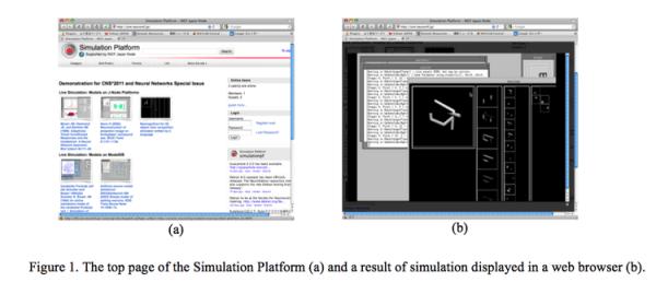 Neuroinformatics 2011 Simulation Platform Quick and easy