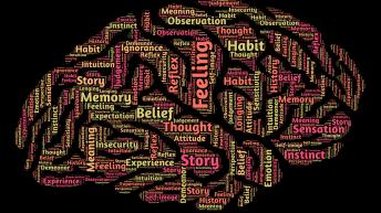 Celebrando las Neurociencias del 2014: expectantes para el 2015