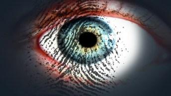 El amor entra por los ojos… y de ahí por el glutamato