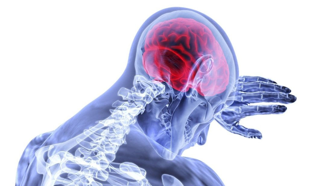 el Daño Cerebral Adquiridoocupa un lugar primordial el daño cerebral causado por la enfermedad cerebral vascular