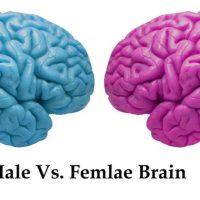 """۱۰ رازی که همه آقایان باید درمورد """"مغز خانمها"""" بدانند"""
