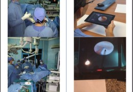 A safe, low-cost, and effective method of training from afar in Neurosurgery