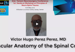 "Sudan Neurosurgery Channel LIVE with Victor Hugo Perez Perez MD, Mexican Neuroanatomist, on ""Spinal Neuroanatomy"" NOW"