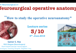 """"""" Neurosurgical Operative Anatomy"""" Series, #5 and #6 Recorded, was LIVE HERE"""