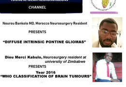 Meeting of the Future Neurosurgeons of Africa today with Two Presentations at 1 pm EST 6 pm Cameroon time