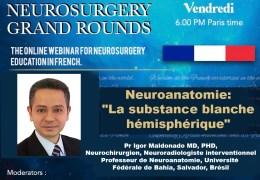 """VENDREDI, 14 MaI, Neuroanatomie: """"La substance blanche hémisphérique"""" le vendredi 14 mai à 18h00, heure de Paris. Pr Igor Maldonado MD, PHD,"""
