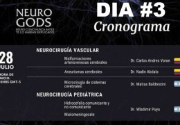 """Grabado, 28 Julio, 2021, Dia #3, de """"Neuro Gods"""", Vivo esta noche a las 8 pm tiempo Peru: Tema: """"Neurocirugia Vascular"""", con 4 Presentaciones"""