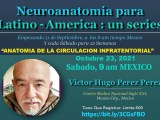 """GRABADO, VIVO, 23 Octubre, 2021,  Mexico, Victor Hugo Perez Perez MD continua su series, #7, con """"Anatomia de la Circulacion Infratentorial"""""""
