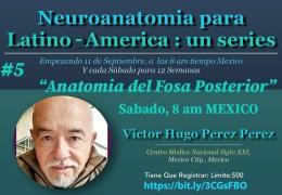 Grabado, VIVO, 9 de Octubre, 2021……..#5 en Series de Neuroanatomia de Victor Hugo Perez Perez MD, VIVO, con Kahoot!