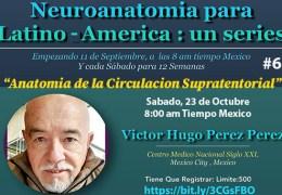 Grabado 16 de Octubre, 2021….., #6 en el Series de Neuroanatomia de Victor Hugo Perez Perez MD, Neuroanatomista Extraordinaire!